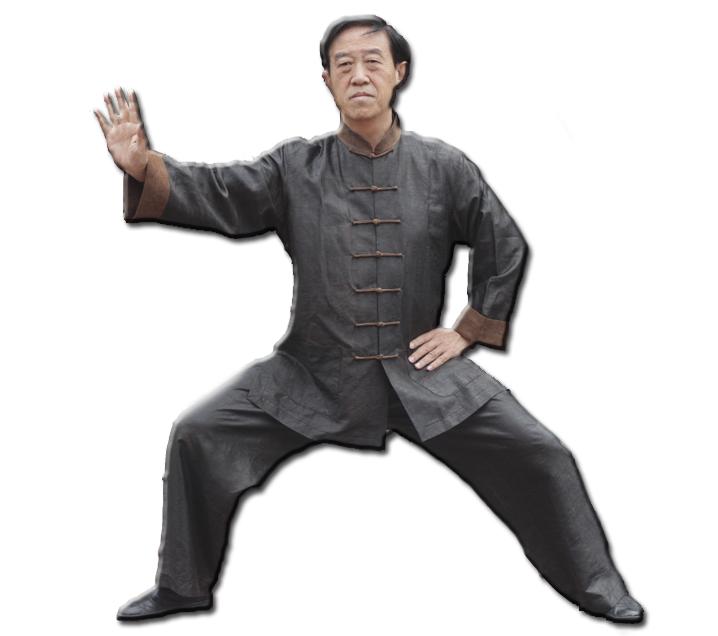 Gran Maestro Chen Zhenglei
