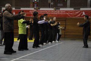 Practicantes de taichi en meditacion Zhan Zhuang